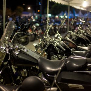 Several black motorcycles lined up - Used Harleys